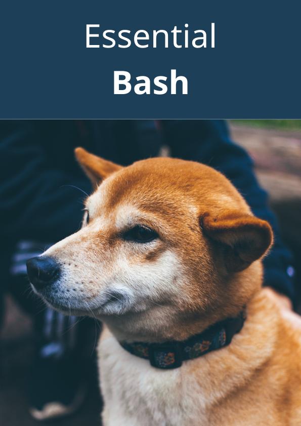 Essential Bash - a free Bash programming book